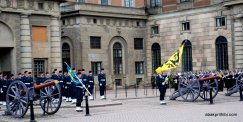 Changing of the Guard, The Royal Palace, Stockholm (6)