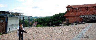 Gediminas' Tower, Vilnius, Lithuania (5)