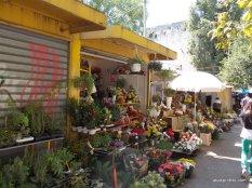 Open Air Market, Split, Croatia (1)