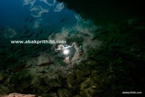 The Plitvice Lakes National Park, Croatia (8)