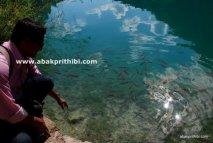 The Plitvice Lakes National Park, Croatia (9)
