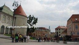 Zagreb Cathedral, Croatia (30)