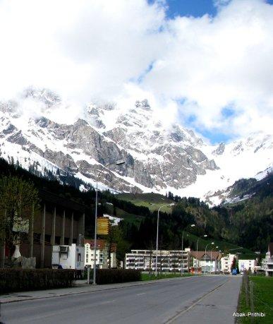 Swiss Beauty (12)