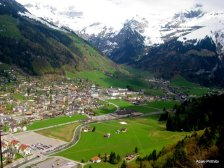 Swiss Beauty (15)