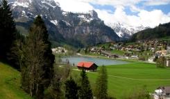 Swiss Beauty (16)