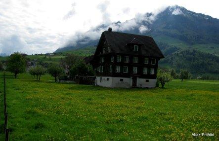 Swiss Beauty (9)