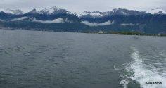 Swiss Lake Journey (17)