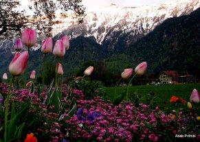 Interlaken, Switzerland (10)