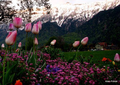 Interlaken, Switzerland (10)