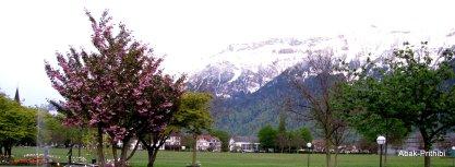 Interlaken, Switzerland (13)