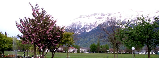 Interlaken, Switzerland (13)