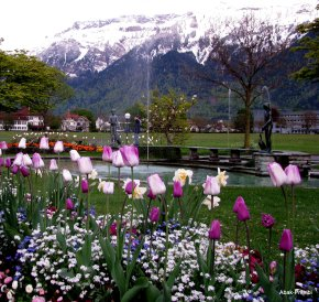 Interlaken, Switzerland (14)