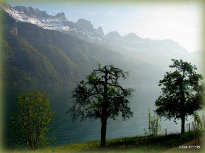 Way to Mt Rigi, Switzerland (1)