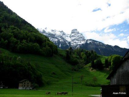 Way to Mt Rigi, Switzerland (10)