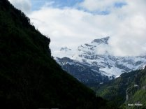 Way to Mt Rigi, Switzerland (11)