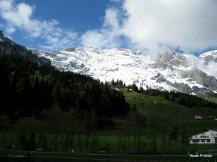Way to Mt Rigi, Switzerland (12)