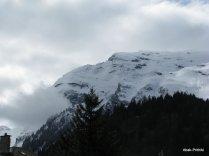 Way to Mt Rigi, Switzerland (13)