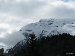 Way to Mt Rigi, Switzerland (13)