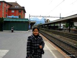 Way to Mt Rigi, Switzerland (17)
