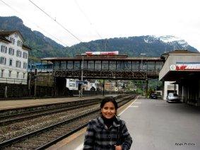 Way to Mt Rigi, Switzerland (18)