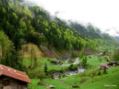 Way to Mt Rigi, Switzerland (5)