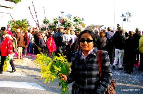 Mimosa Flower, Nice, France (11)