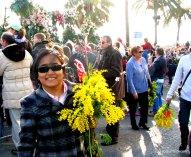 Mimosa Flower, Nice, France (13)