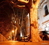 Night out,Toulouse, France (31)