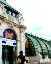 Schmetterlinghaus, Vienna, Austria (5)