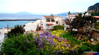 Giardini di Augusto, Capri, Italy (1)
