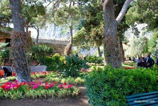 Giardini di Augusto, Capri, Italy (14)