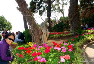 Giardini di Augusto, Capri, Italy (15)