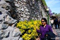 Giardini di Augusto, Capri, Italy (16)