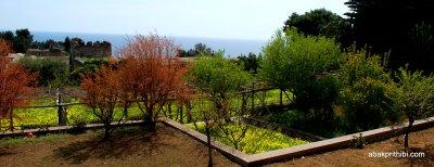 Giardini di Augusto, Capri, Italy (6)