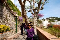 Giardini di Augusto, Capri, Italy (8)
