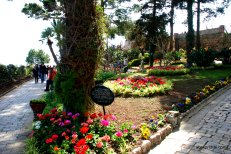 Giardini di Augusto, Capri, Italy (9)