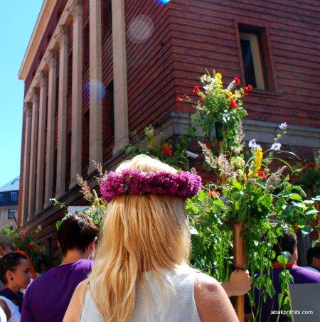 National day of Riga, Latvia (11)