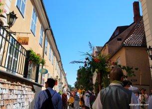 National day of Riga, Latvia (7)