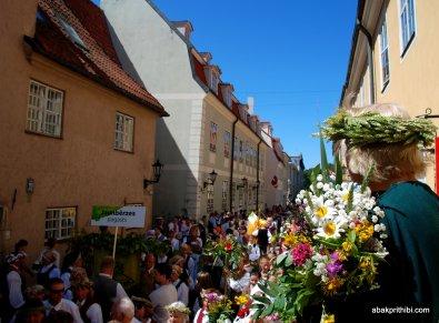 National day of Riga, Latvia (8)