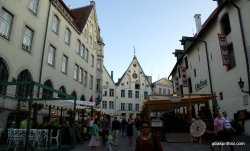 Tallinn Town Hall square, Estonia (4)