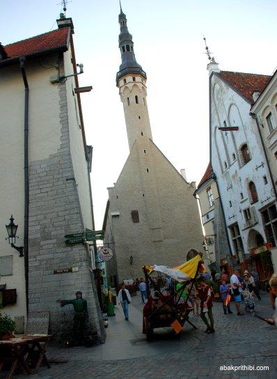 Tallinn Town Hall square, Estonia (7)
