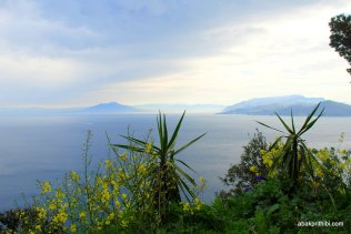 View from Villa San Michele, Anacapri, Italy (7)