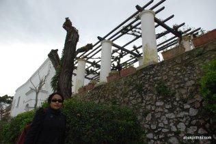 Villa San Michele, Anacapri, Italy (4)