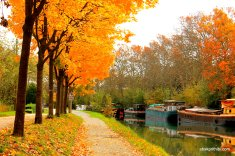 Canal du Midi, Southern France (1)