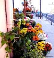 Flowers shop - (3)