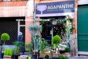 Flowers shop - (4)