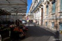 Flowers shop - (5)