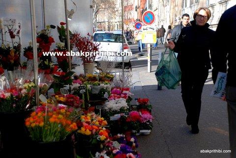 Flowers shop - (6)