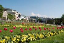 Mirabell Palace, Salzburg, Austria (19)