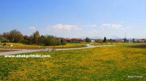 Natural beauty of Bavaria, Germany (10)